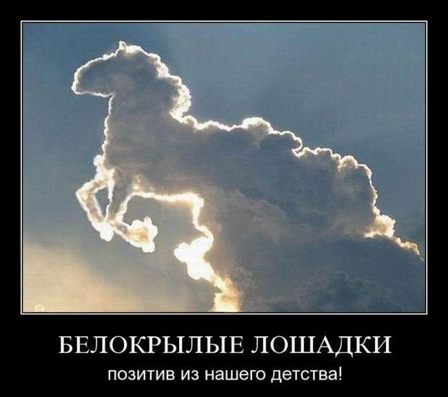 Белокрылые лошадки. Позитив из нашего детства!