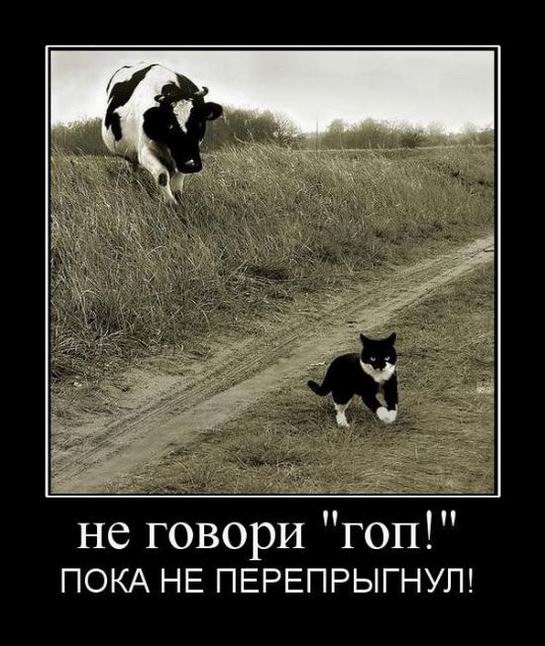 Не говори «гоп!» пока не перепрыгнул!