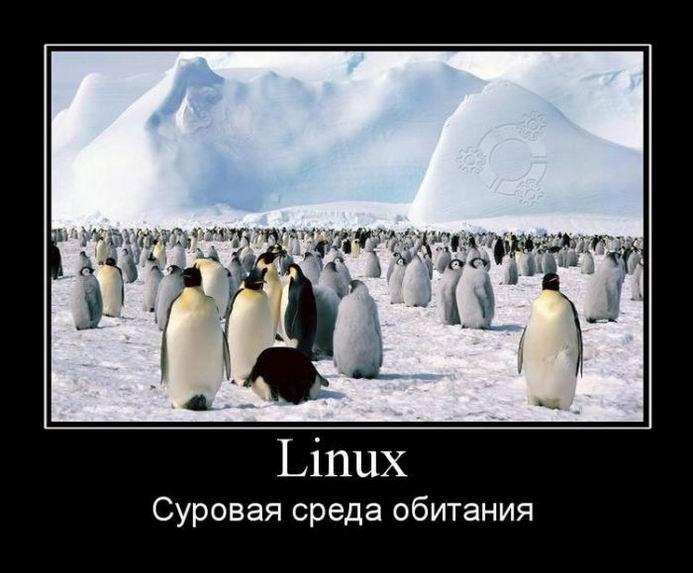 Linux. Суровая среда обитания