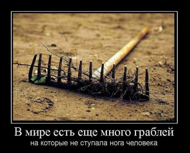 В мире есть еще много граблей, на которые не ступала нога человека