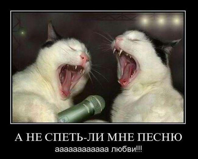 Песня Анекдот