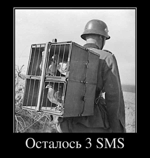 Осталось 3 SMS
