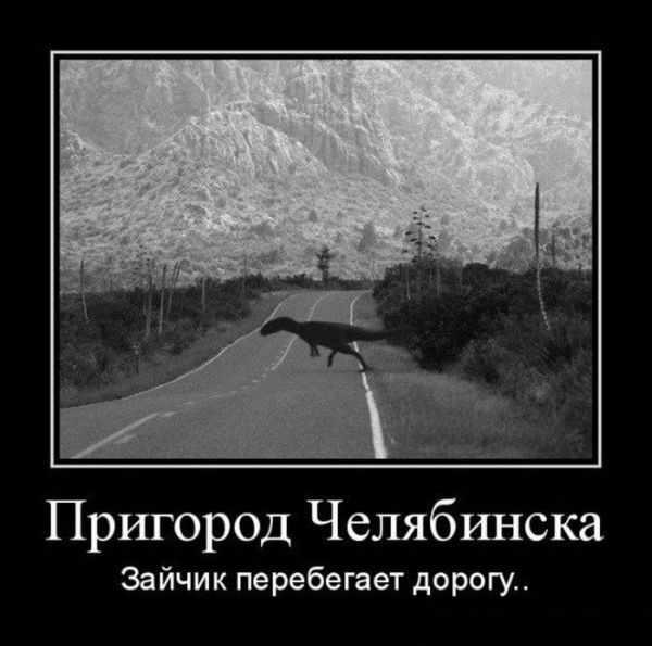 Пригород Челябинска. Зайчик перебегает дорогу