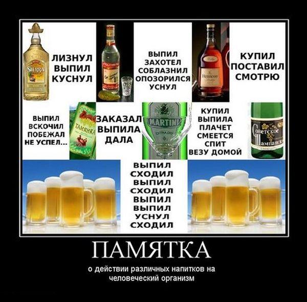 Памятка о действии различных напитков на человеческий организм