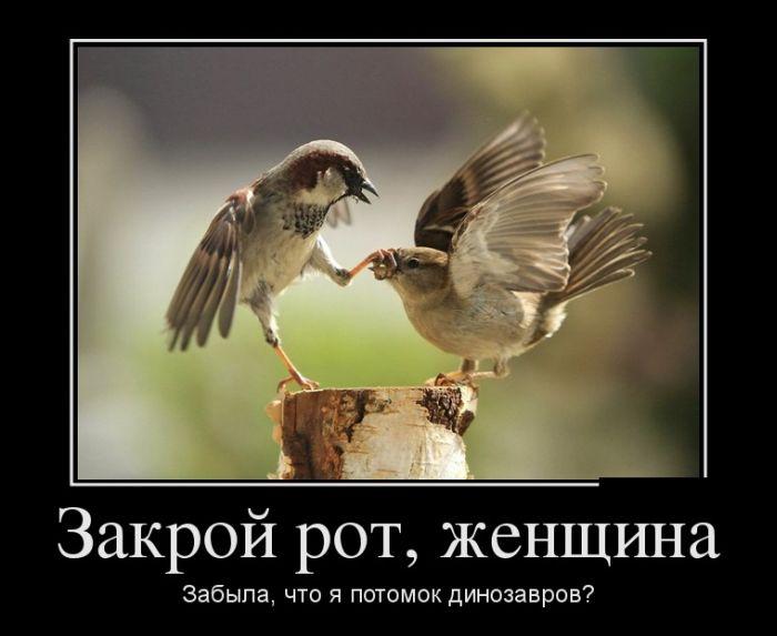 Демотиваторы про завтрак президента (30 фотографий)