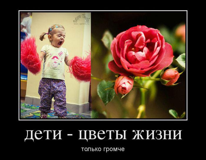 Демотиваторы про идеальную женщину, шоу-бизнес и что нужно для счастья (757 часть, 30 фотографий)