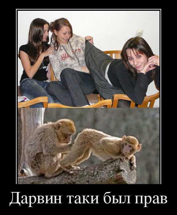 Дарвин таки был прав