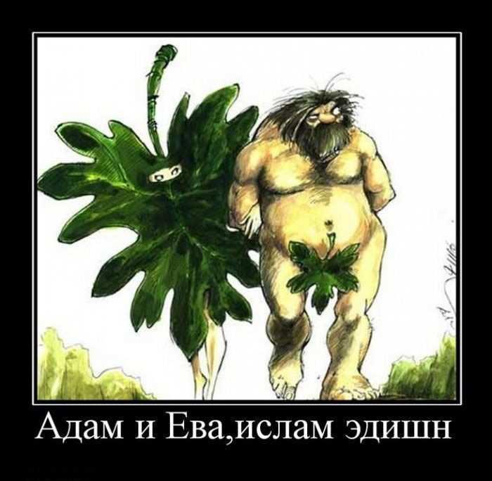 Адам и Ева, ислам эдишн