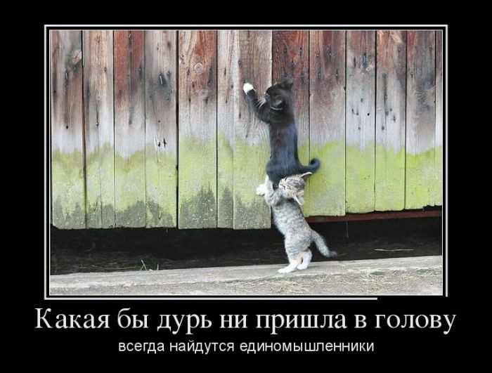 Демотиваторы про Хабаровск и макияж (30 фотографий)