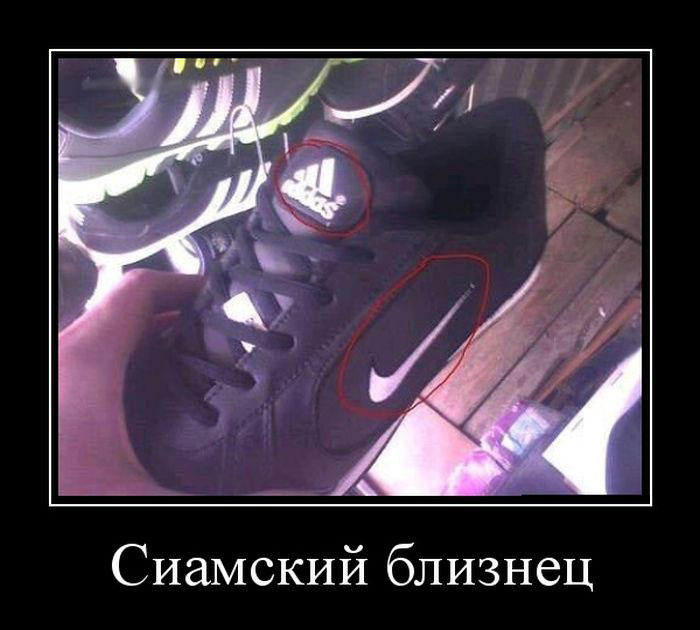 http://superdemotivator.ru/dem/demotivatory_898/1.jpg