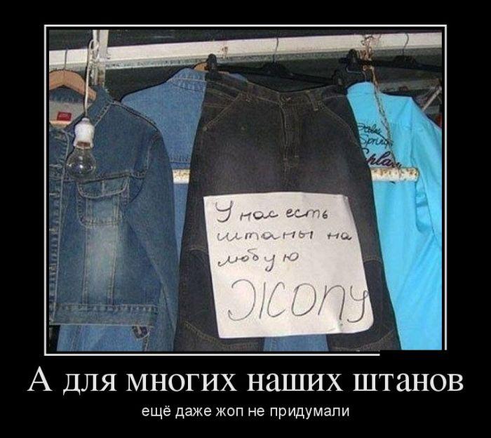 А для многих наших штанов ещё даже жоп не придумали