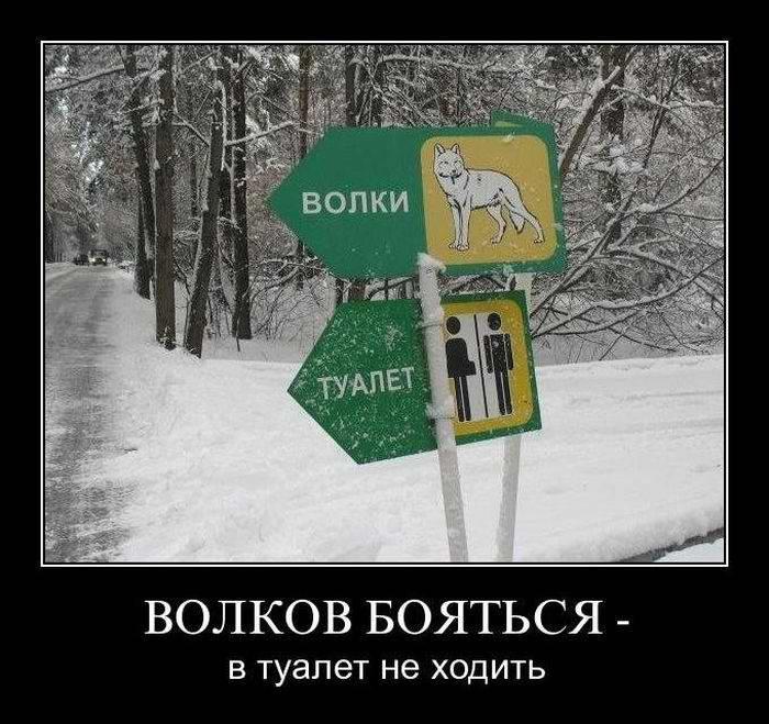 Волков бояться - в туалет не ходить